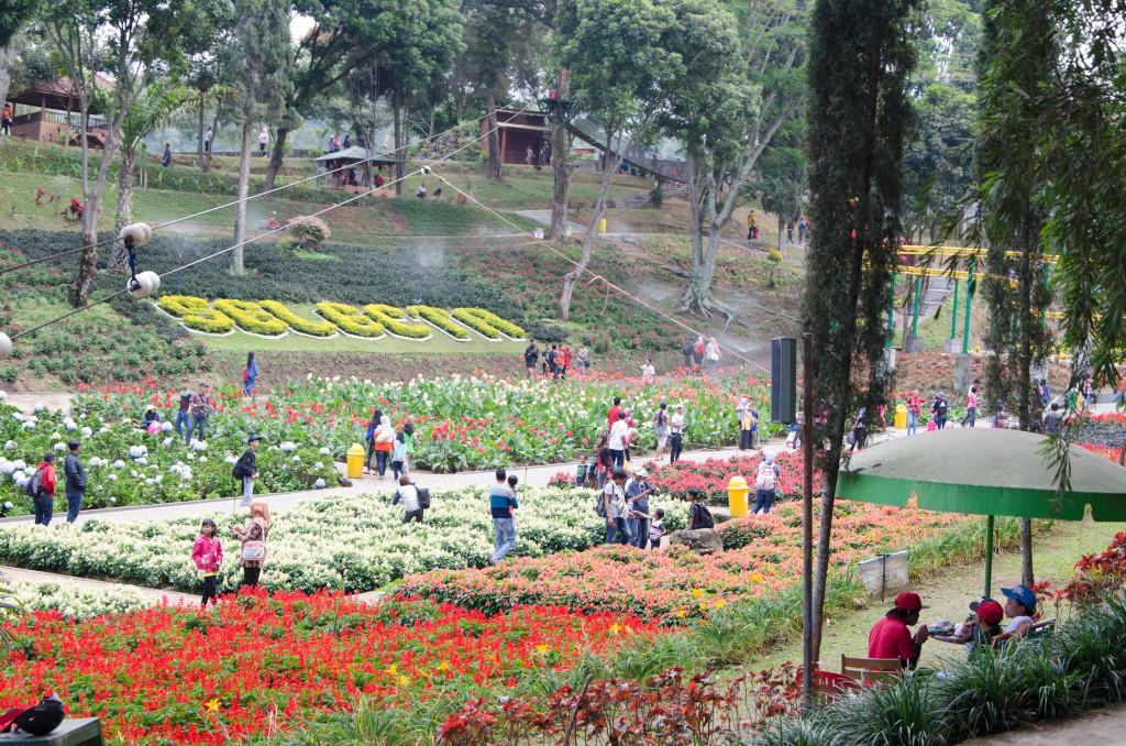 malang 2015-7