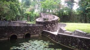 kebun di belakang Musuem