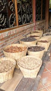 beberapa bahan alami yg digunakan sebagai pewarna batik